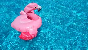 Inflatable children`s toy pink flamingo swims in clear blue turquoise ripple pool water. There is a place for text, copy. Inflatable children`s toy pink flamingo royalty free stock images