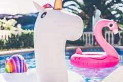 Inflatable colorful white unicorn and pink flamingo at the swim pool. Holidays time in the swimming pool with plastic Stock Photos