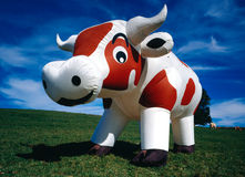 Inflatable cow. A verry big inflatable cow on a meadow. (No unsharpen mask used Stock Photo