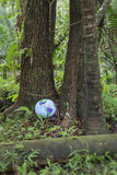 Inflatable Globe in Rainforest Royalty Free Stock Photo