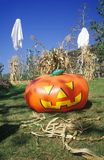 Inflatable Pumpkin and Ghosts, Los Angeles, California Royalty Free Stock Photo