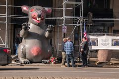 Inflatable rat is seen on the city street in front of a non-union construction site with protestors seen nearby royalty free stock images