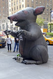 Inflatable rat used by Labor Unions in NYC Royalty Free Stock Images