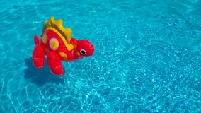 An inflatable red dinosaur in clear rippling pool water. Funny baby toy floats isolated in blue water. Summer vacation royalty free stock images