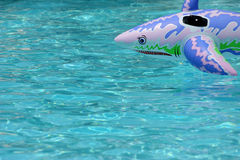 Inflatable shark. Off center with room for text royalty free stock photo