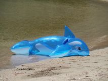 An inflatable toy dolphin Royalty Free Stock Photos