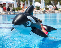 Inflatable whale stock photography