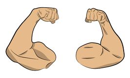Inflated muscle hands vector drawing illustration stock photos