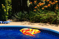 An Inflated Toy Fish In A Backyard Swimming Pool Royalty Free Stock Photo