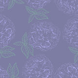Inflorescence Hydrangea randomly arranged in seamless pattern, vector illustration in hand drawing linear style. Stock Photo