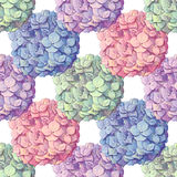 Inflorescence Hydrangea randomly arranged in seamless pattern, vector illustration in hand drawing style. Royalty Free Stock Photos