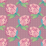 Inflorescence Hydrangea randomly arranged in seamless pattern, vector illustration in hand drawing vintage style. Stock Photos