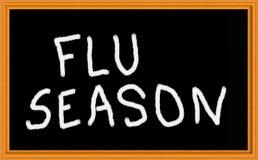 influensaseasjon Arkivfoto