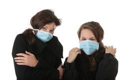 influensaswine Fotografering för Bildbyråer