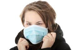 influensaswine Arkivfoton