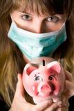 influensaswine Arkivfoto