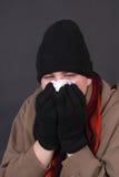 Influenza di inverno Fotografia Stock Libera da Diritti