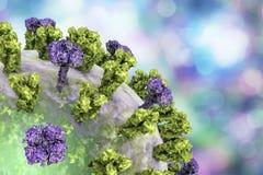 Influenza virus illustration. Influenza virus on colorful background showing surface glycoprotein spikes hemagglutinin and neuraminidase. 3D illustration Royalty Free Stock Photo