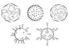 Influenza viruses Royalty Free Stock Photography