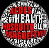 Info-texto de la fiebre de dengue Fotografía de archivo