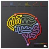 脑子形状教育和毕业连接时间安排Infogra 免版税库存照片