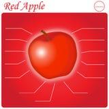 Infogram rouge d'Apple Illustration de Vecteur