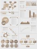 INFOGRAPHIC人口统计学5布朗 图库摄影