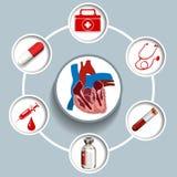 Infographic用医疗设备 向量例证