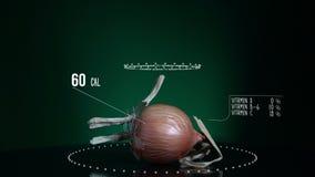 Infographic Żółta cebula z witaminami, mikroelement kopaliny Energia, kaloria i składnik, zbiory wideo