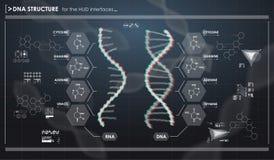 Infographic στοιχεία HUD με τη δομή DNA Φουτουριστικό ενδιάμεσο με τον χρήστη Αφηρημένος εικονικός γραφικός Διανυσματική απεικόνιση