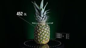 Infographic ананаса с витаминами, минералами microelements Энергия, калория и компонент сток-видео