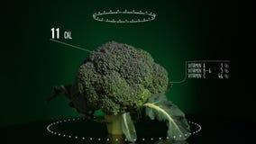 Infographic брокколи с витаминами, минералами microelements Энергия, калория и компонент сток-видео