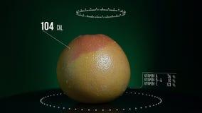 Infographic грейпфрута с витаминами, минералами microelements Энергия, калория и компонент иллюстрация штока