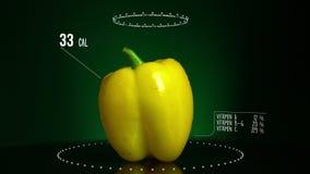 Infographic желтого цвета болгарского перца с витаминами, минералами microelements Энергия, калория и компонент акции видеоматериалы