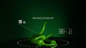 Infographic зеленого цвета перца Chili с витаминами, минералами microelements Энергия, калория и компонент акции видеоматериалы