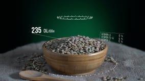 Infographic зеленой чечевицы с витаминами, минералами microelements Энергия, калория и компонент сток-видео