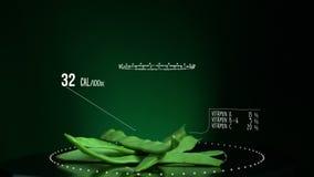 Infographic зеленых фасолей с витаминами, минералами microelements Энергия, калория и компонент сток-видео