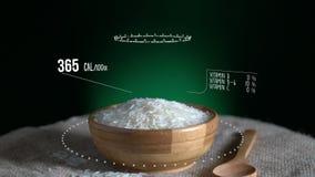 Infographic длинного риса зерна с витаминами, минералами microelements Энергия, калория и компонент сток-видео