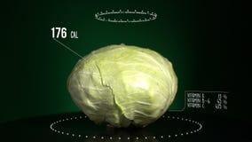Infographic капусты с витаминами, минералами microelements Энергия, калория и компонент сток-видео