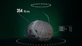 Infographic кокоса с витаминами, минералами microelements Энергия, калория и компонент видеоматериал