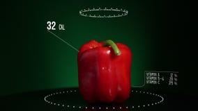 Infographic красного цвета болгарского перца с витаминами, минералами microelements Энергия, калория и компонент видеоматериал