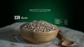 Infographic пшеницы с витаминами, минералами microelements Энергия, калория и компонент иллюстрация штока