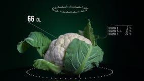 Infographic цветной капусты с витаминами, минералами microelements Энергия, калория и компонент сток-видео