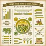 葡萄酒橄榄色的收获infographic集合 免版税库存照片