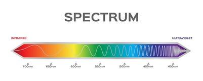 Infographic av färg för synligt spektrum solljusfärg vektor illustrationer