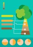 Infographic Baum stockfoto
