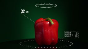 Infographic of Bell Pepper Red with vitamins, microelements minerals. Energy, calorie and component stock footage
