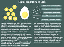 Infographic about the beneficial properties of egg. Half flat egg and text are isolated on a dark background. Helpful information. Vector Illustration Royalty Free Stock Photos