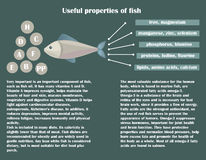 Infographic about the beneficial properties of fish. Fish icon and text are isolated on a dark background. Helpful information. Vector Illustration Stock Images