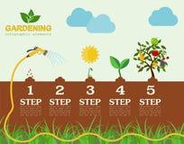 Infographic beståndsdelar för trädgårds- arbete Uppsättning för funktionsdugliga hjälpmedel Arkivfoton